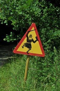 warning of the vikings